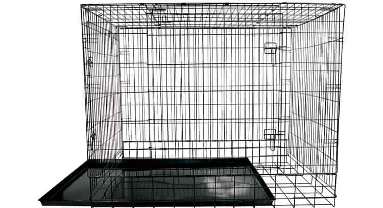 55 inch dog crate