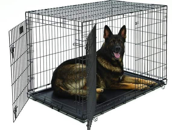 Double Door Dog Crates