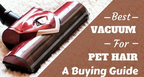 best lightweight vacuum cleaner for pet hair