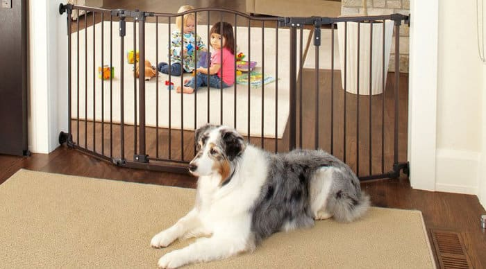 extra wide pet gates