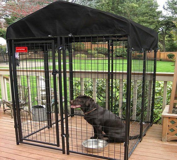 giant vari kennel