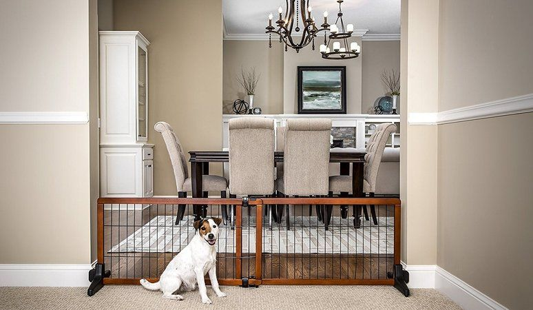 pet gate freestanding