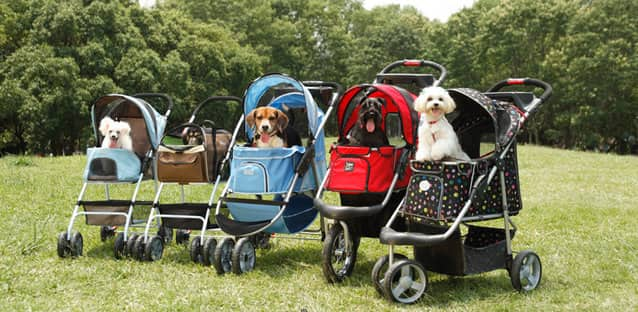 Dog Stroller for Hiking