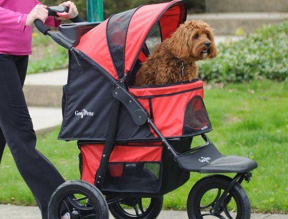 Gen7 Pet Jogger Stroller
