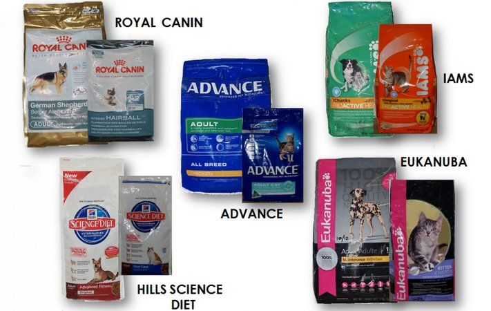 Choose the Puppy Food Brand Wisely