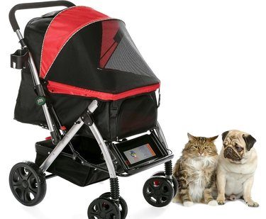 Dog Strollers for medium and large dogs